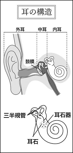 石 めまい 耳